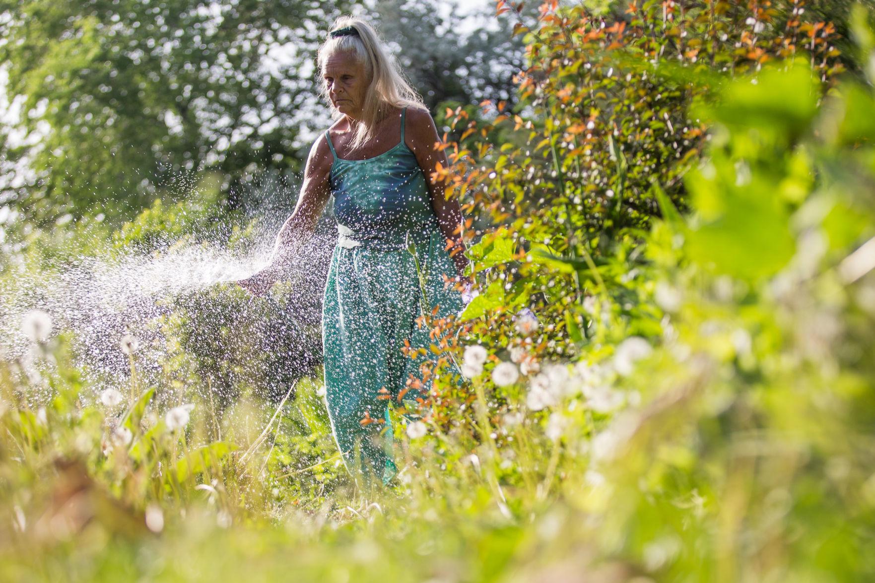 Lynn Cosmos in her Garden