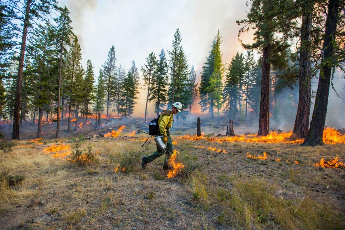 WildfirePlan-YH-102617.jpg