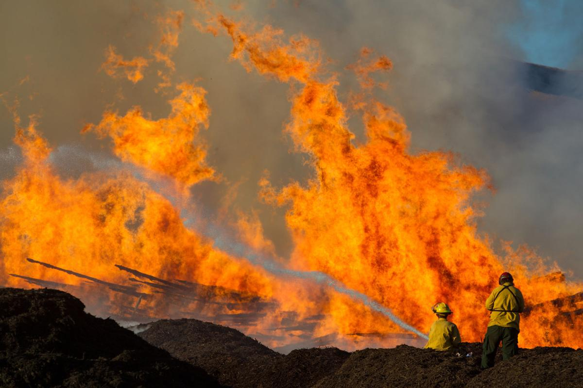 Hundreds of logs burn when fire erupts at Parker mulch facility