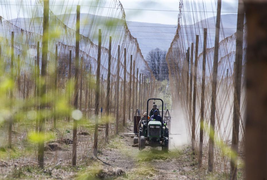 Agriculture an essential Central Washington industry with new rules, continuing concerns