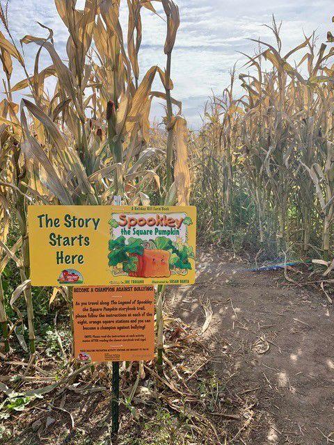 Harvest Happenings