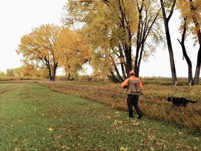 Phillips: Fall and plethora of hunting seasons are in the air