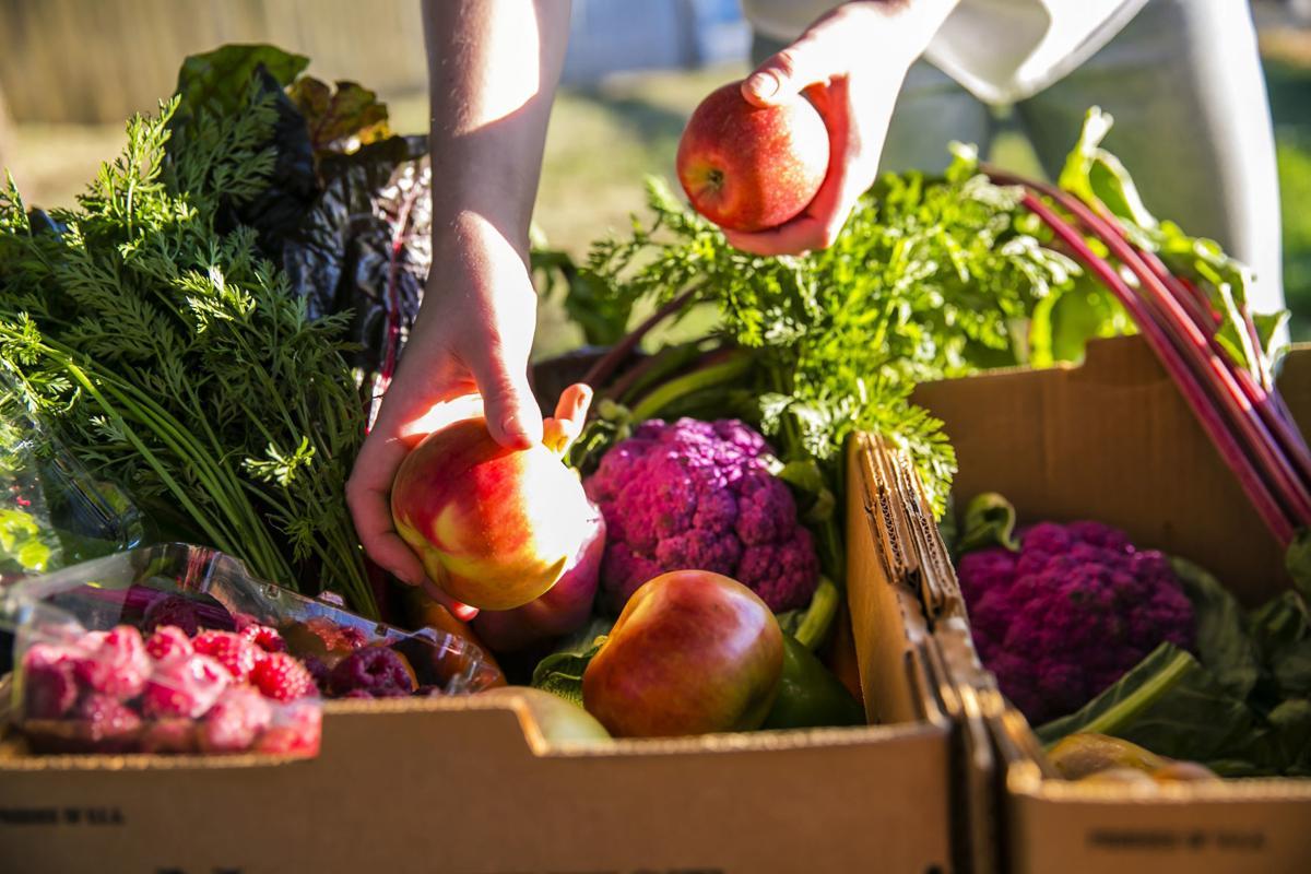 resized fruit box.jpg
