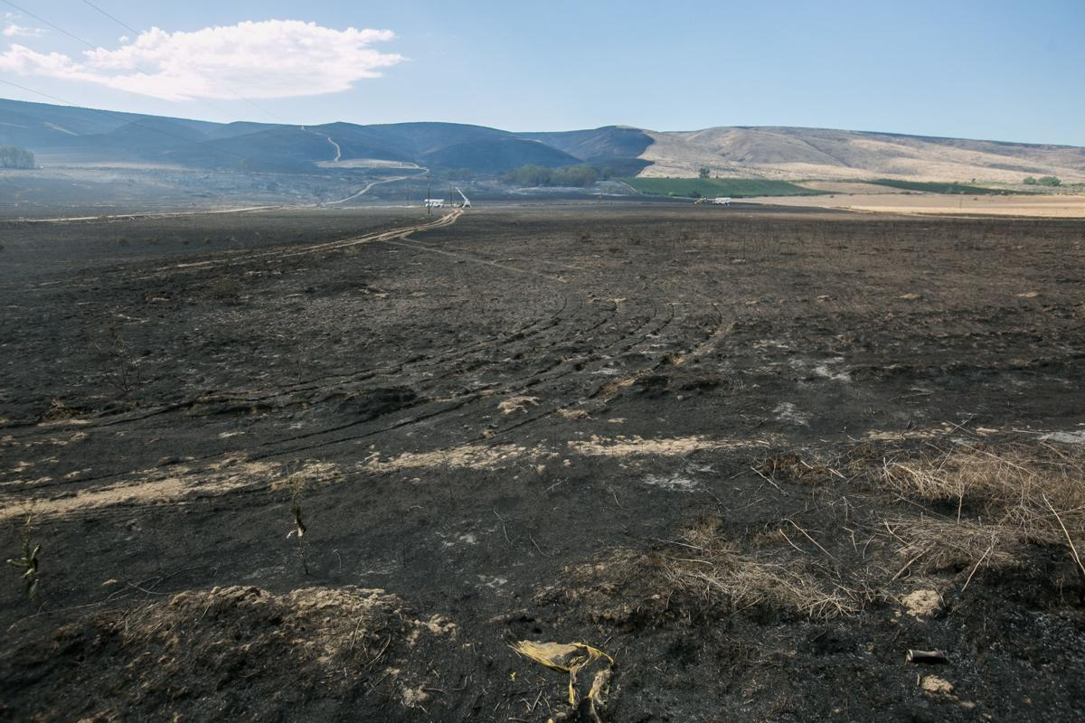 200818-yh-news-ridgefireupdate-1.jpg