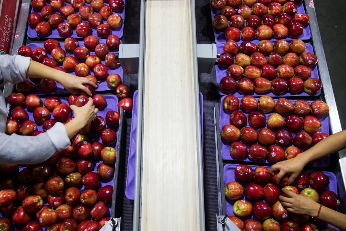 Washington apple farmers brace for impact after Mexico