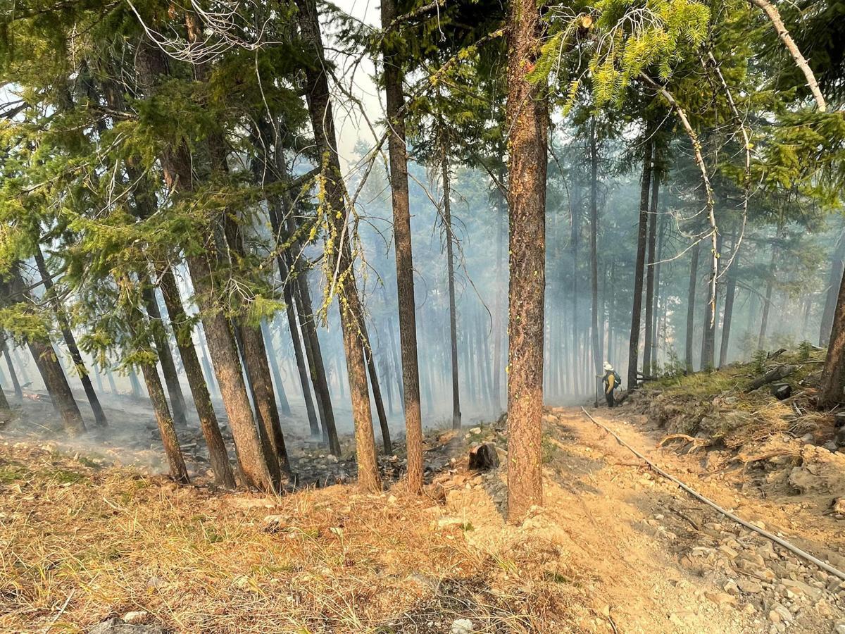 Schneider Springs Fire smoke blue