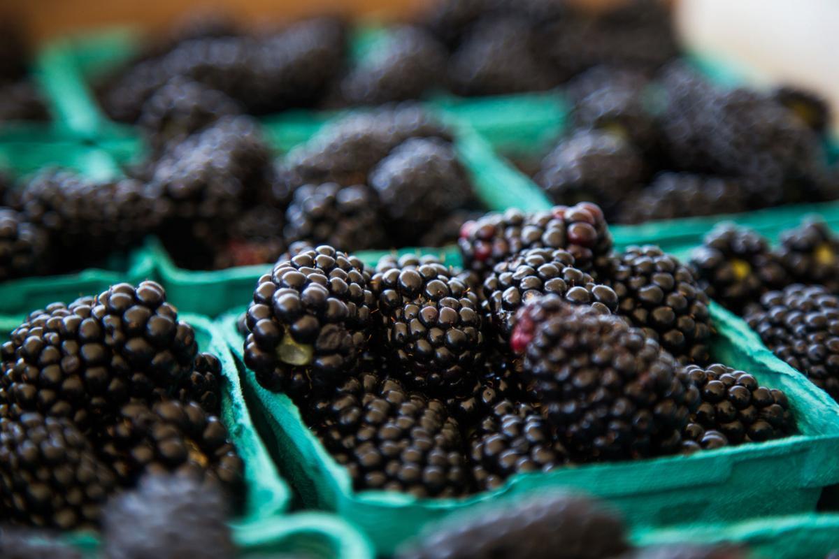 Resultado de imagen para blackberry fruit editorial