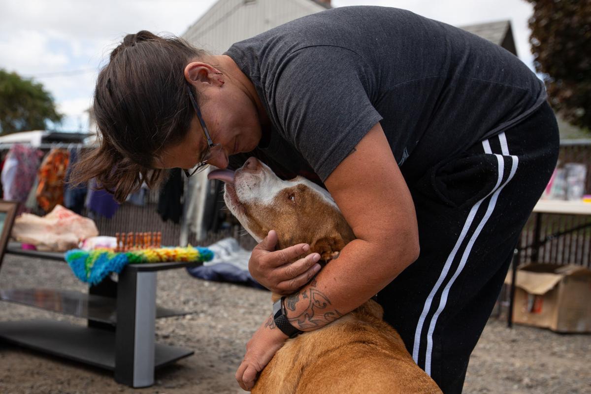 Yakima Herald Dogs For Sale