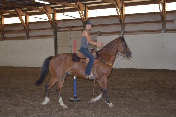 East Valley horse trainer's arena gives her the space to pursue her passion and pass it on