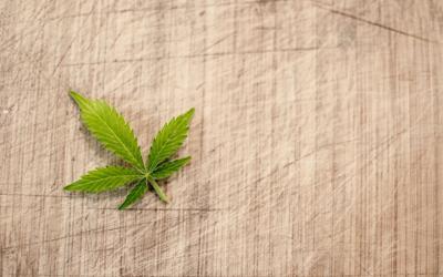 Virginia: Governor Northam Signs Adult Use Marijuana Legalization Legislation