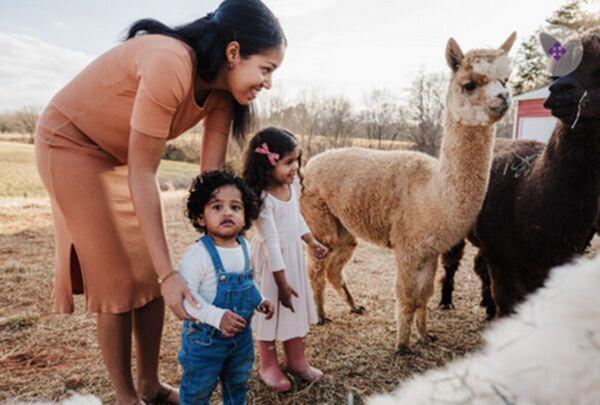 FIBER-looking at alpacas.tif