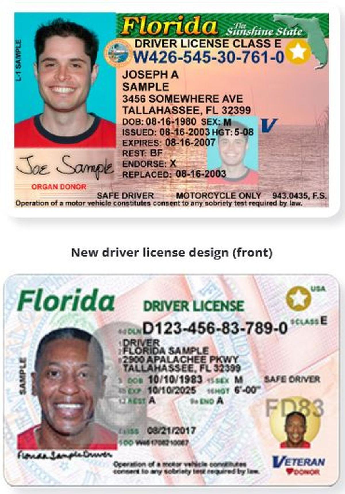 Old and new Florida licenses
