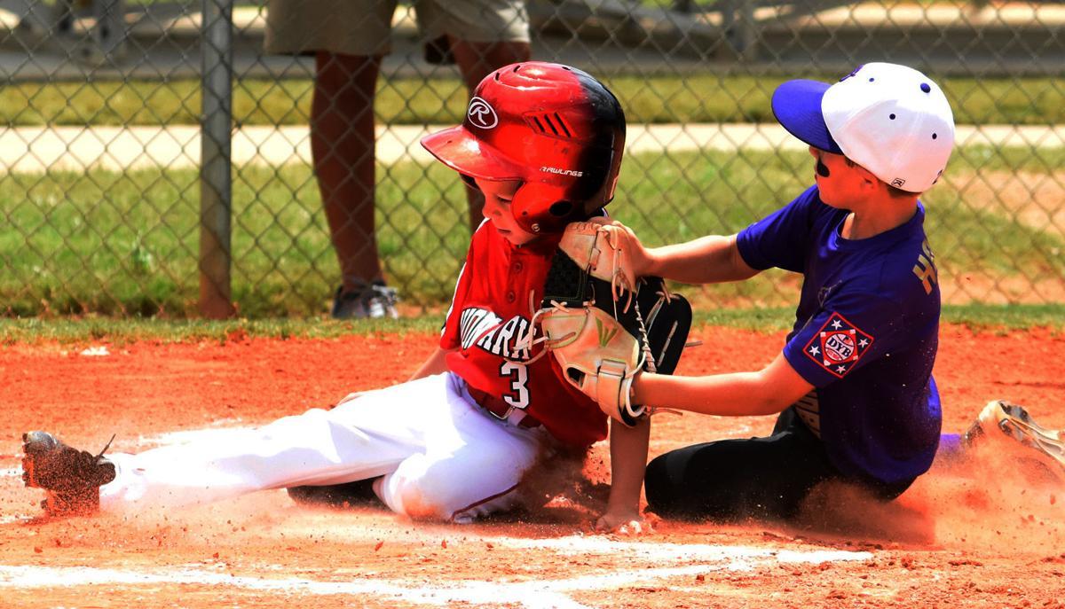 Dixie Youth Baseball on tap | Highlands News-Sun | yoursun com