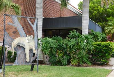 The panther at Punta Gorda City Hall