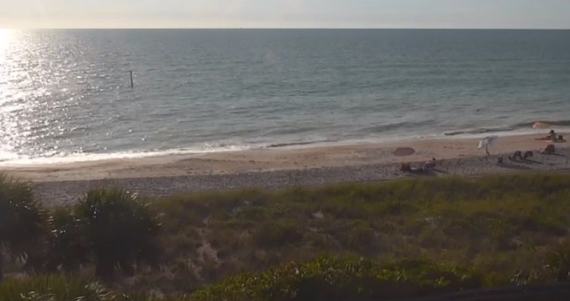 Red tide comes and goes on Englewood Beach | Englewood Sun ...