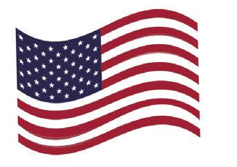 Richard and Elizabeth Marino flag photo