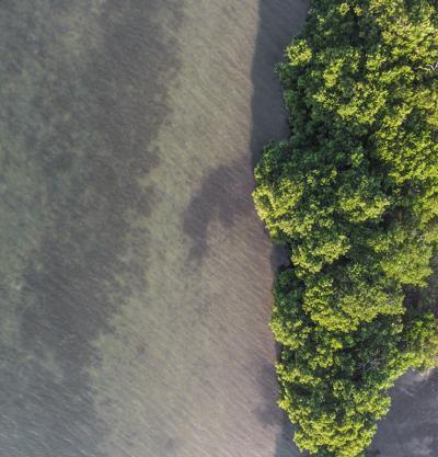 aerial island