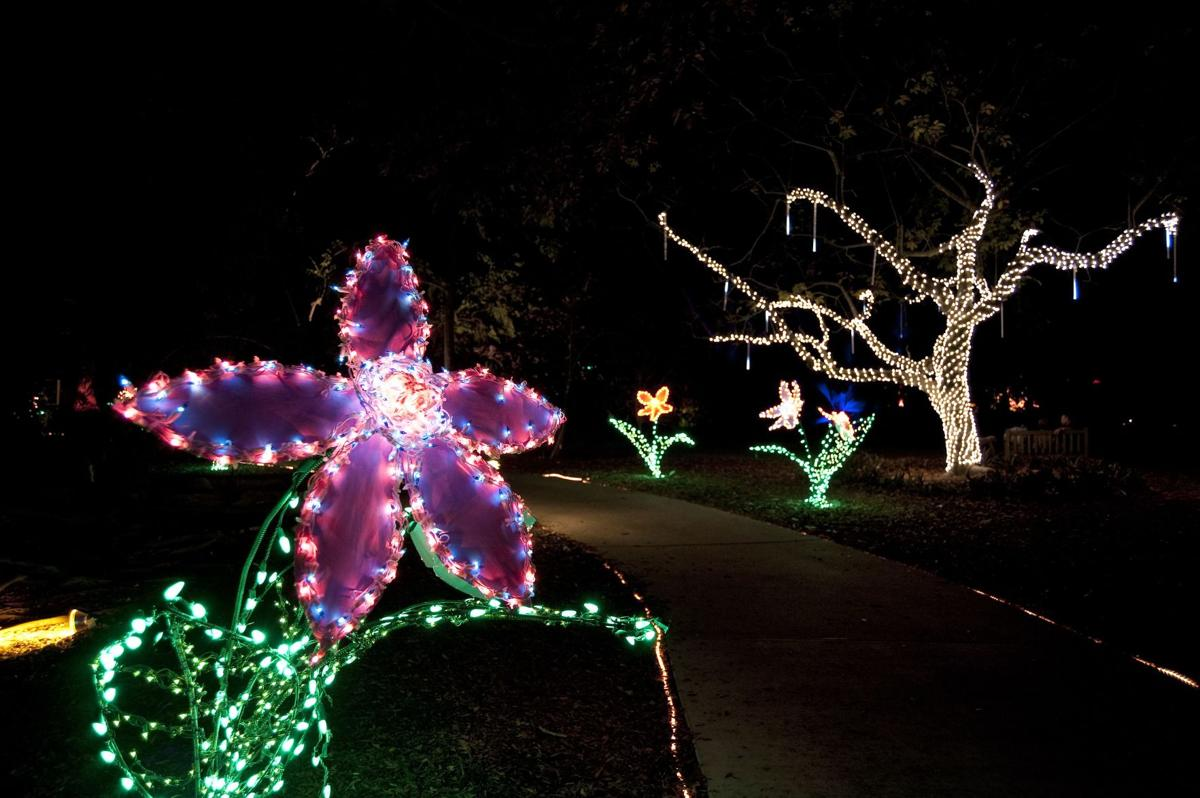 The family event, Lights in Bloom, celebrates 15 years of a holiday tradition with 15 nights of holiday cheer