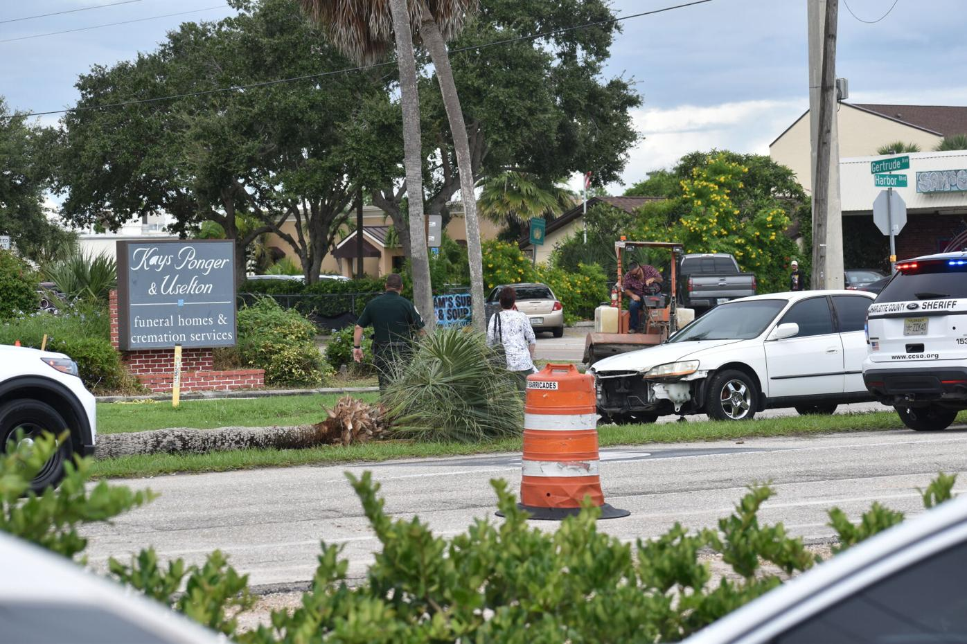 Harbor Blvd Crash Tree