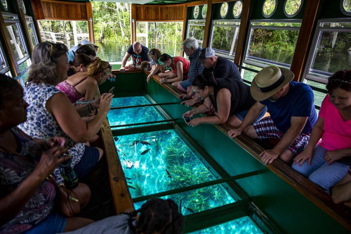 Silver Springs State Park boat tour