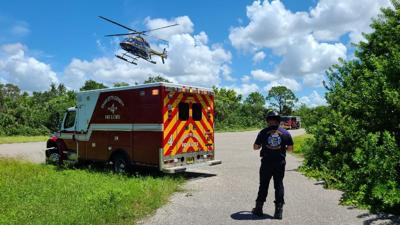 Tree trimmer falls 20 feet while working in Placida