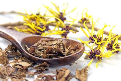 Is witch hazel as magical as it sounds?