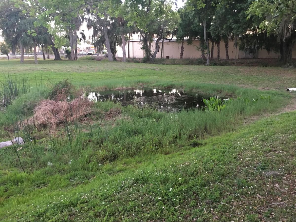 Stormwater pond in Charlotte Harbor