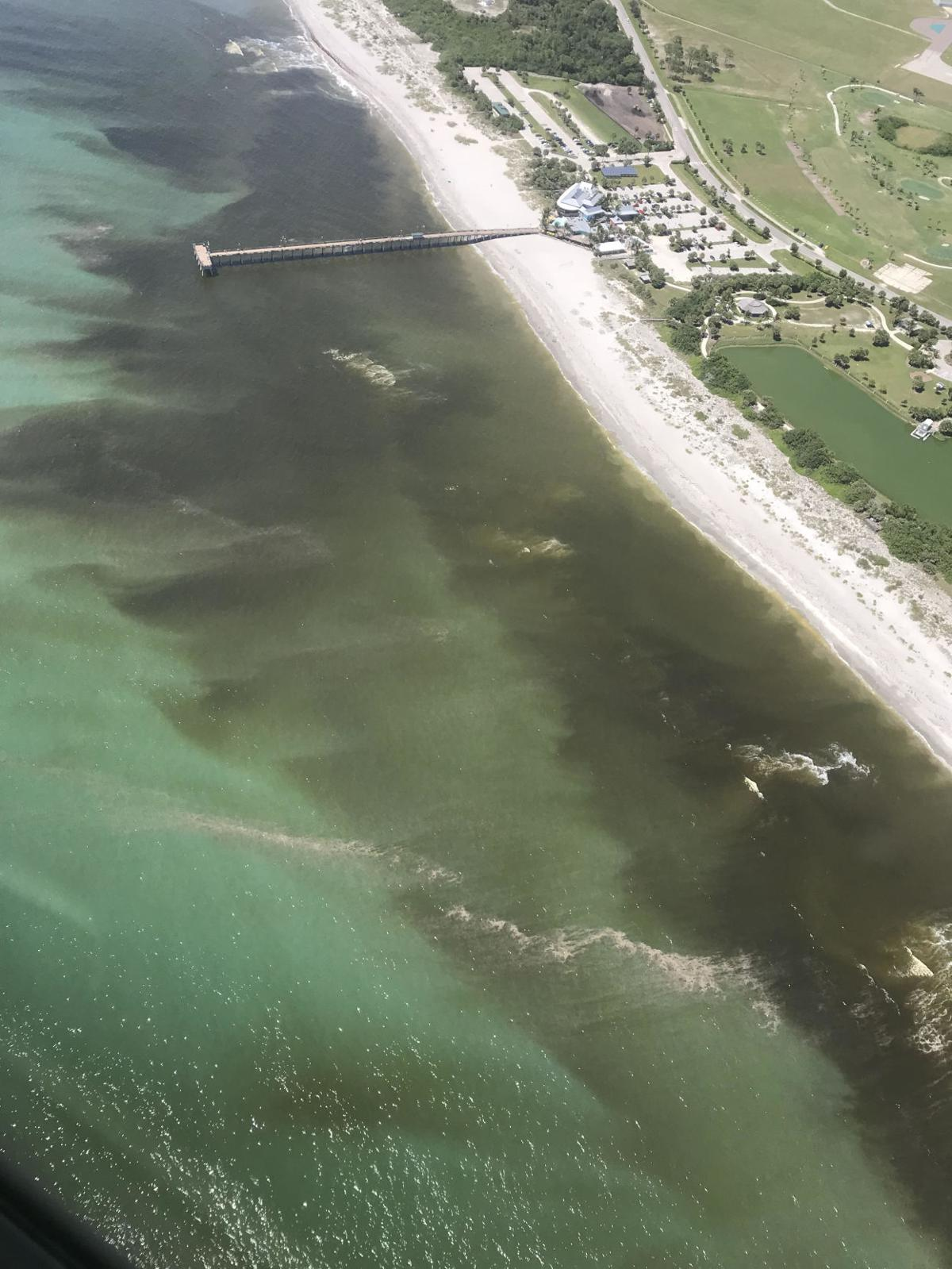 Sick Of Red Tide Or Are You Sick From Red Tide Red Tide