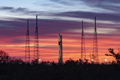 'Mighty mice' launched into space to help researchers study muscle atrophy and bone degeneration