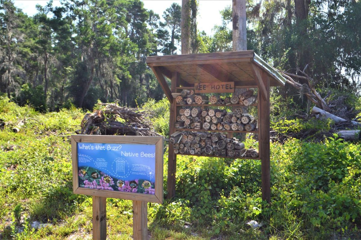 Bee Hotel at Rye Preserve