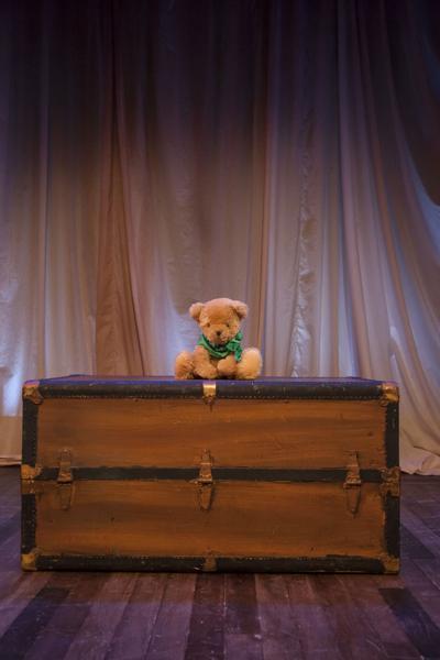'A Beary' big adventure'