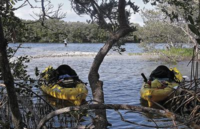 lemon bay kayak