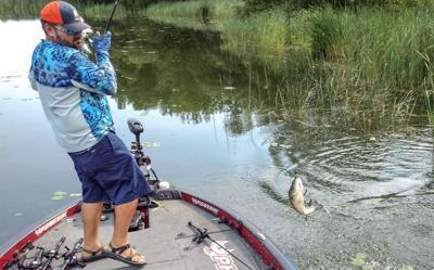 bass flipping
