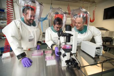 We work with dangerous pathogens in a biocontainment lab