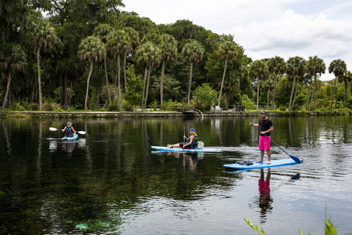 Paddleboarding at Silver Springs State Park