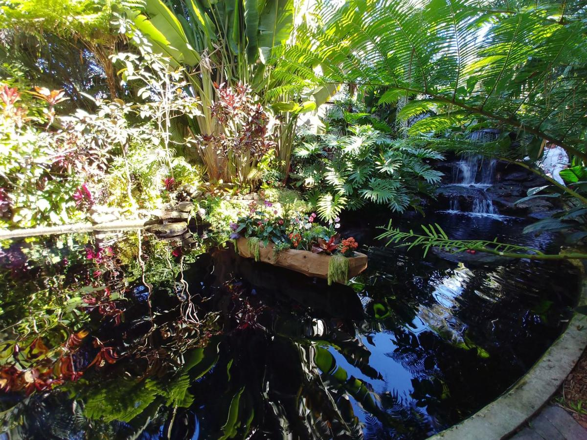 Dugout canoe like the ones found in Tahiti floats in the Selby Gardens koi pond
