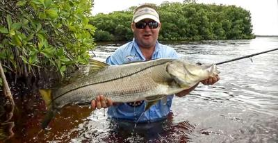 snook fly