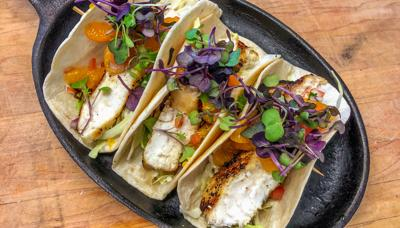 blacktip shark tacos