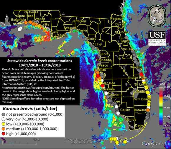 Red tide map Oct. 17