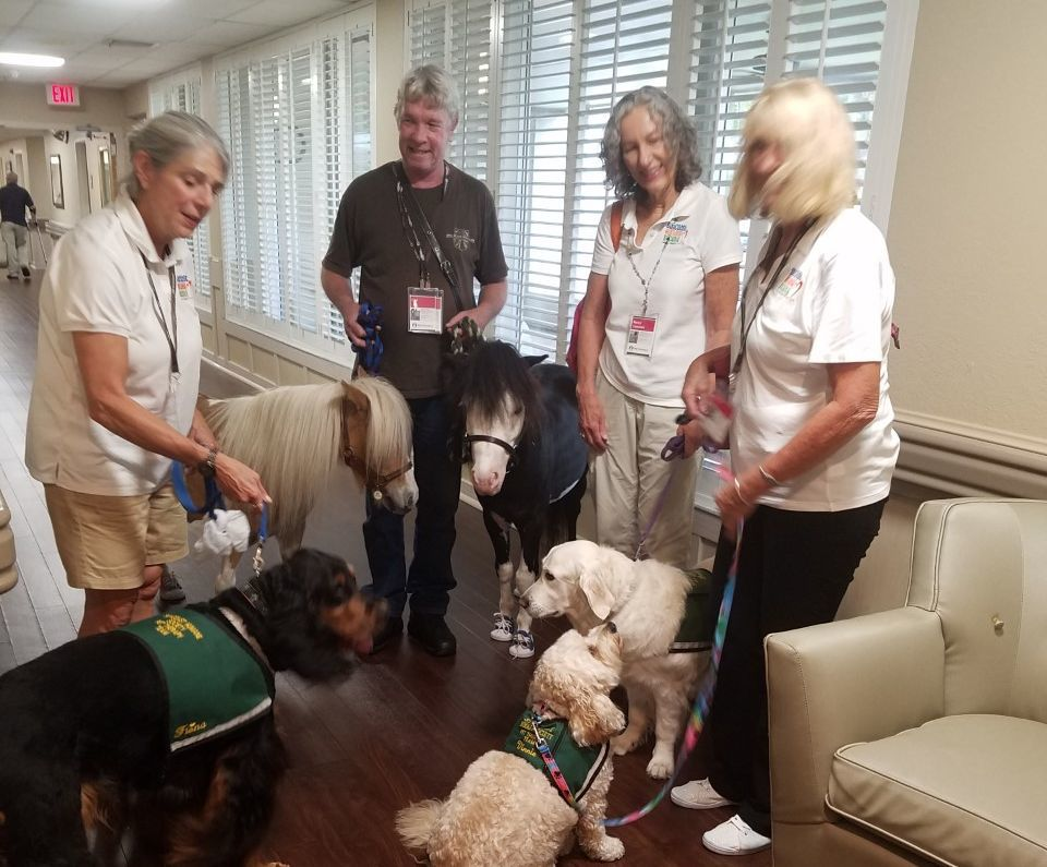 'Dog and pony show' visits Village Place Health and Rehabilitation Center