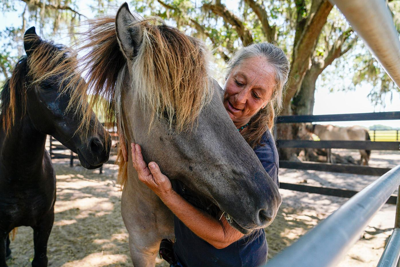 Diane Delano, founder and president at the Wild Horse Rescue Center