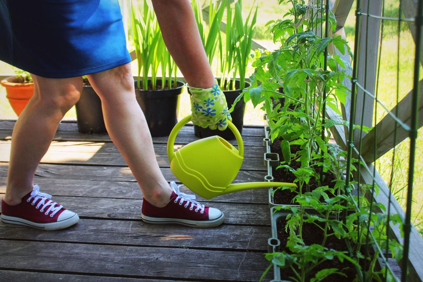 Garden anywhere with containers