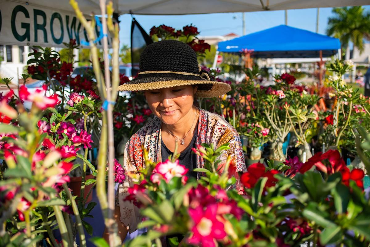 Annual Hibiscus Festival was in full bloom