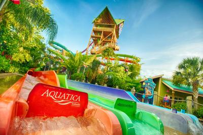 SeaWorld's Aquatica resumes daily operations