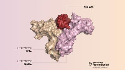 Protein disgram