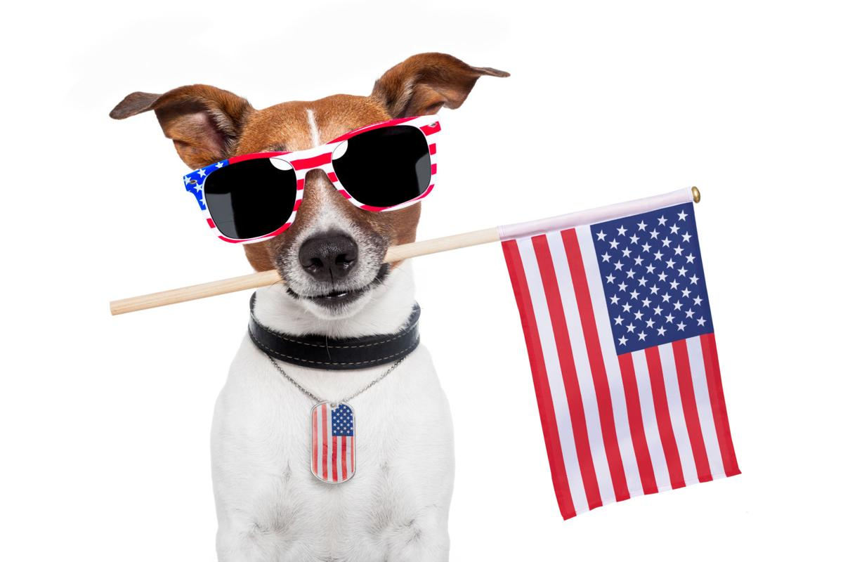 Enjoy a safe and happy Independence Day