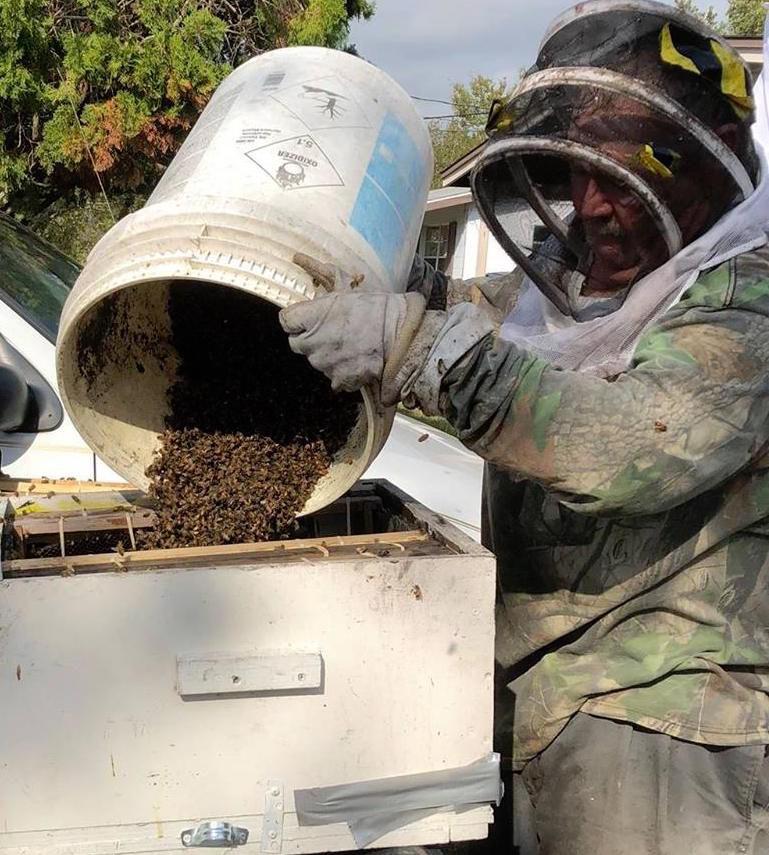 Ridge Beekeepers