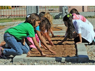 Gary Knox garden cultivates learning, harvests higher test scores
