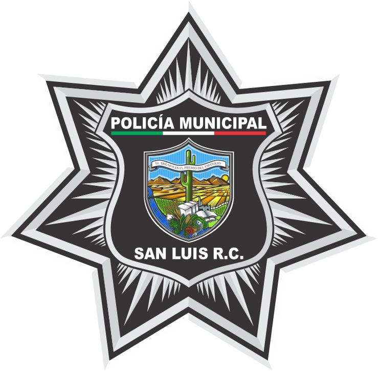 POLICIACA 2