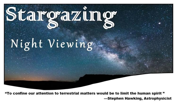 Nightviewing
